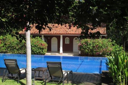 Casa Mapache - Room view pool - Tamarindo