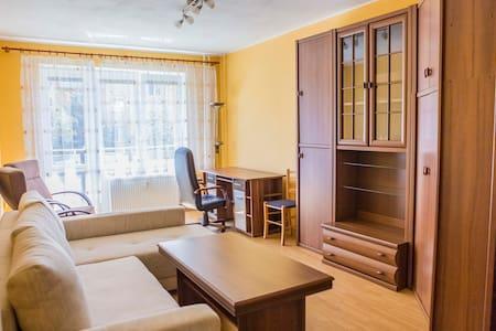Apartment Prague st. - Apartemen