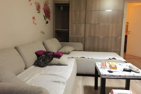 中国传媒大学北门,定福庄福怡园小区舒适沙发