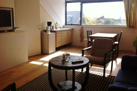 Ruim appartement (40m2) bij Utrecht - Daire