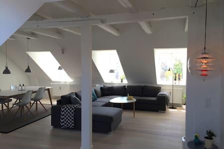 Large apartment in Copenhagen