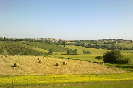 A tutti coloro che amano la natura - Montemarciano - Bed & Breakfast