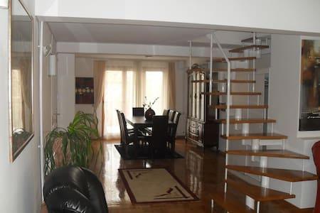 Dedinje, Residental zone, Penthouse - Apartament