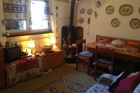 Appartamento in montagna -piste sci ogni comfort - Santo Stefano D'aveto - Apartment