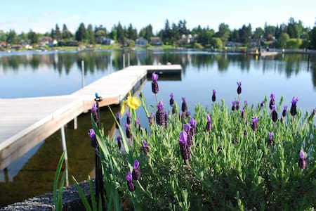 Lake House Waterfront Retreat close to Airport! - Casa