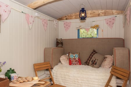 Shepherds Hut in Purbeck Woodland . - Hut