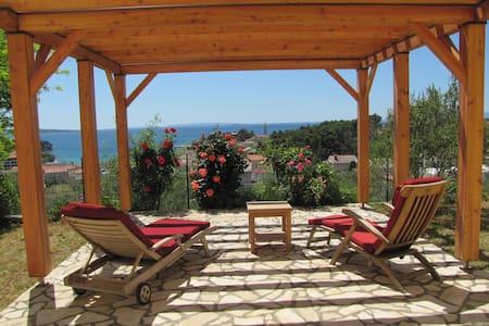 BELLA VITA holidays in roses - Rab - Apartment