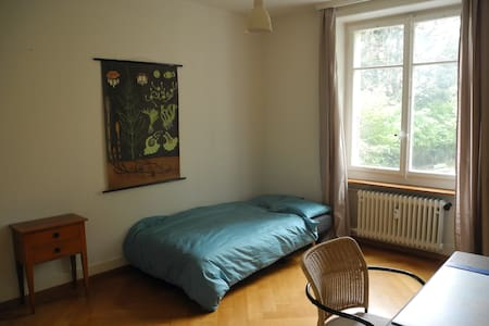 Simple cosy room in Bern city - Wohnung