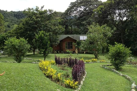 Eco-Solar Country Cottage in Mindo