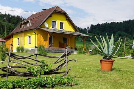 Haus Scharfer - Dom