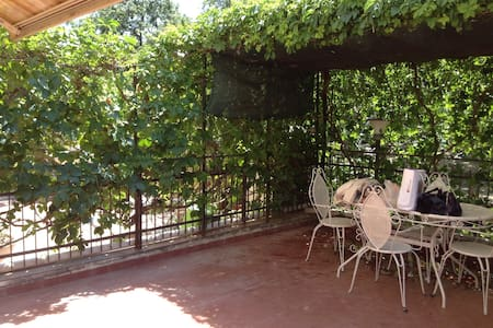 Nice apartment with large terrace - Montalto Marina