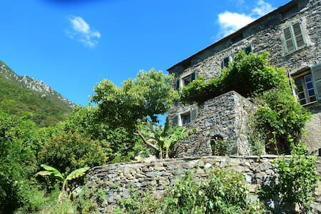 Authentic corsican village house  sea and mountain - Santa-Maria-Poggio