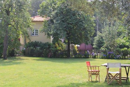 Casa São Vicente de Cima - Póvoa de Lanhoso - Villa