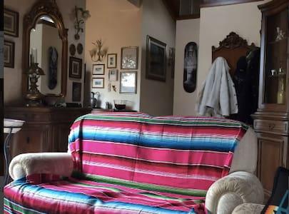 Attico / loft con terrazzo e giardino pensile - Mirandola