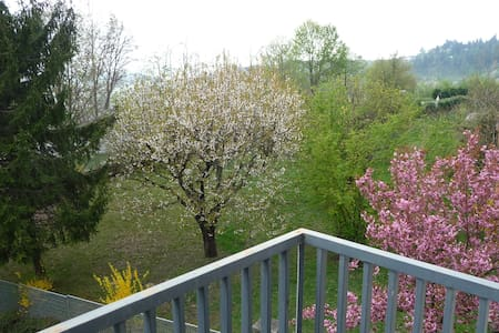 "A very nice location in ""Langhe"" - Huoneisto"