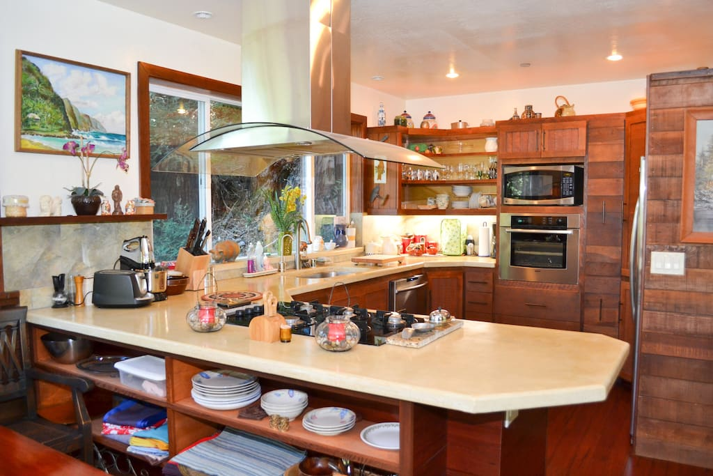 Open Plan Gourmet Kitchen