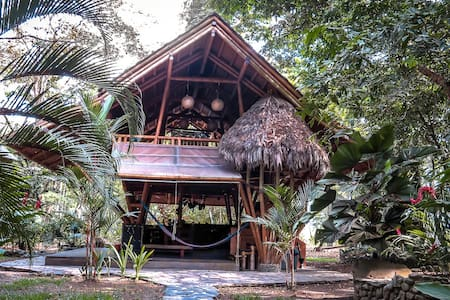 Casa Tonka is a beautifully appointed bamboo house on a ten acre beachfront property close to Matapalo. There are good surfing waves in walking distance, a surf school plus board rentals.