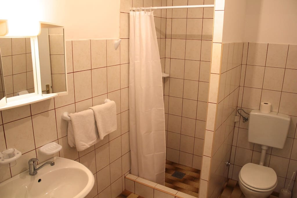 The private bathroom of the room with shower, lavabo and toilet