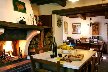 Ancient stone farmhouse Amiata - Apartmen