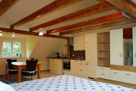 Ferienwohnung im Unterallgäu - Apartment