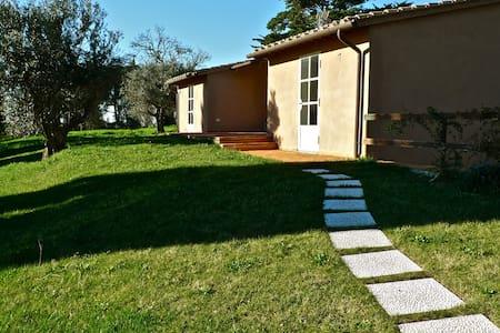 Tuscany,Bolgheri,IndipendentCottage - House