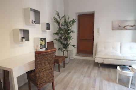 1 bedroom apt, quiet, in the center - Antibes - Apartment