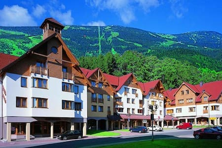 Apartmá Beran 2/2-Rokynice Krkonoše - Apartment