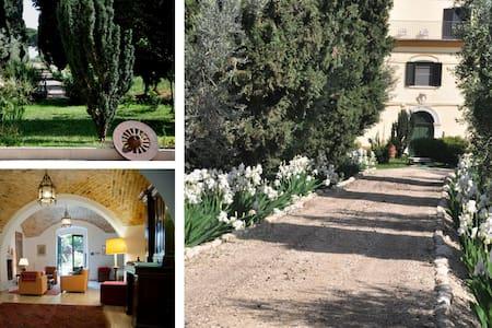 Casa Colonna - San Martino in Pensilis - Apartment