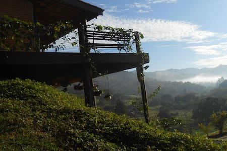 Um quarto dos sonhos na Serra da Mantiqueira - Joanópolis - Chatka