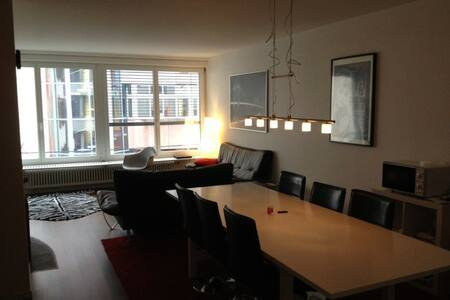The nice room in central basel (barfusserplt) , convenient for the Station (5 m) and airport (15 m) and during Art Basel. My room is in a very nice and big flat with balcony and all the available services (2 baths, huge living room, laundry/dryer)