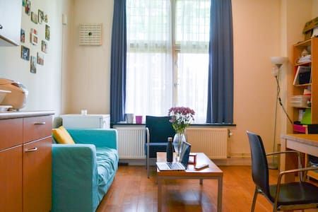 Cosy, large apt in University - Apartment