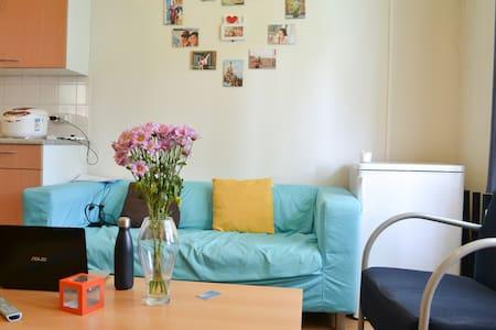 Cosy, large apt in University - Appartamento