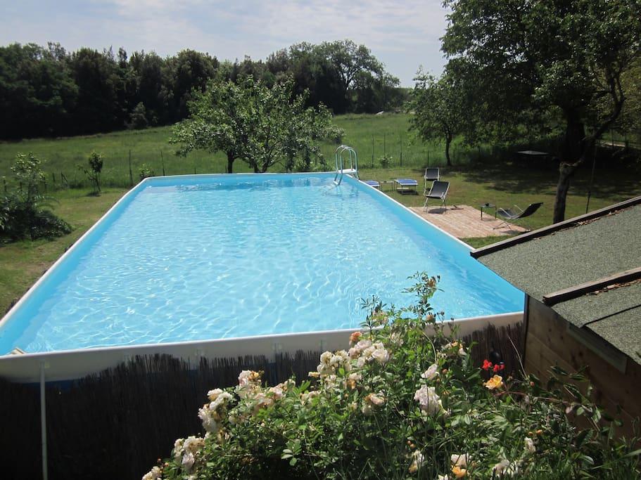 piscina ecologica deputata a sale