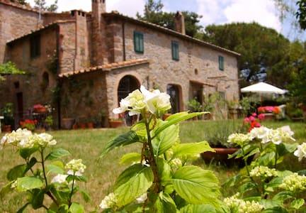 Casavacanze campagna con piscina - Montecatini Val di Cecina - Apartment
