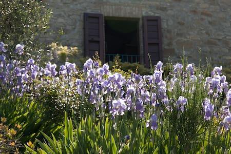 """Villa """"Gli Orti"""" in Maremma - Scansano - Villa"""