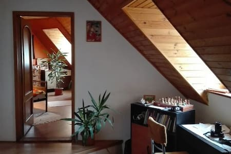 Loft apartment in historical center - Appartement