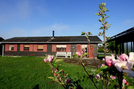 Summer close to the beach - Bindslev - House