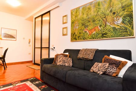 Lovely Studio historic district - Appartement