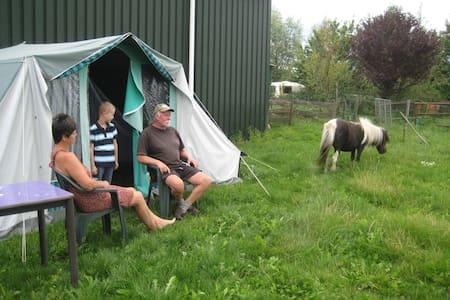 Kamperen in een tent tussen de dieren. - Boerakker - Zelt