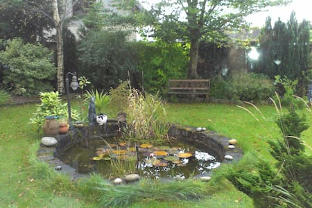 A well furnished house - Galway