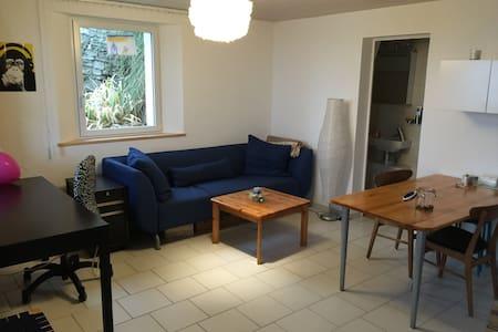 Nice apartment in Biel/Bienne - Biel - Wohnung