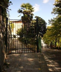 Perugia Elce Liberty