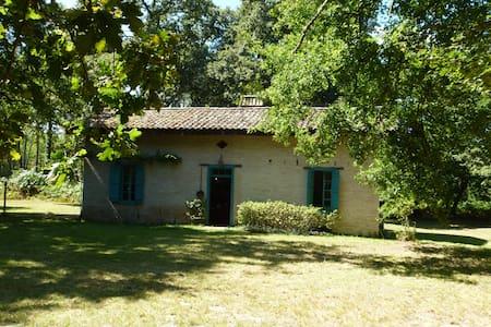 Maison en plein cœur de la foret - Captieux - House