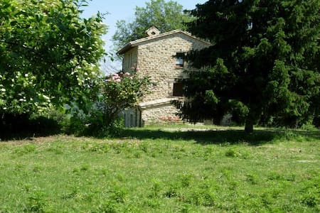 B&B BOSCOVECCHIO ASSISI - Assisi - Bed & Breakfast