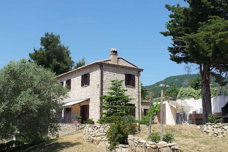 Masseria immersa negli ulivi - Villa