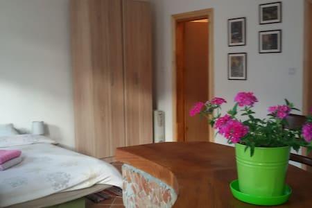 Apartman Irina - Apartment