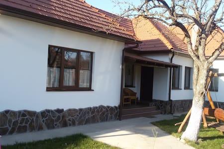 Cozy house in Transylvania