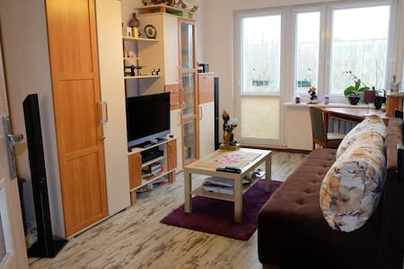 Big, nice room near the city center - Wohnung