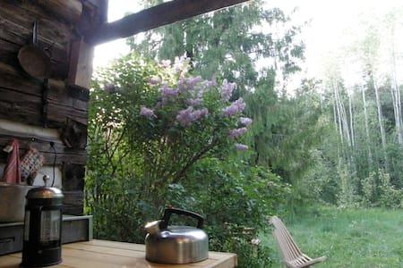 Ptarmigan Hills Wilderness Cabin - Bed & Breakfast