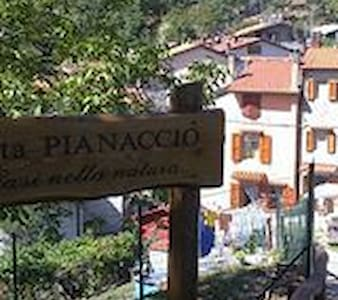 2 A PIANACCIO ORSIGNA PRACCHIA - Appartamento